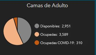 covid19pr camas disponibles adultos