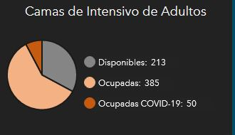 covid19pr camas intensivo disponibles adultos
